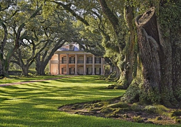 'Photographing South Louisiana' with landscape photographer William Guion | Oak Alley Foundation