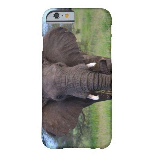African Elephant iPhone 6 Case