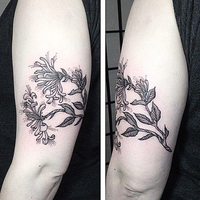 honeysuckle tattoo tattoos pinterest honeysuckle tattoo tattoo and branch tattoo. Black Bedroom Furniture Sets. Home Design Ideas