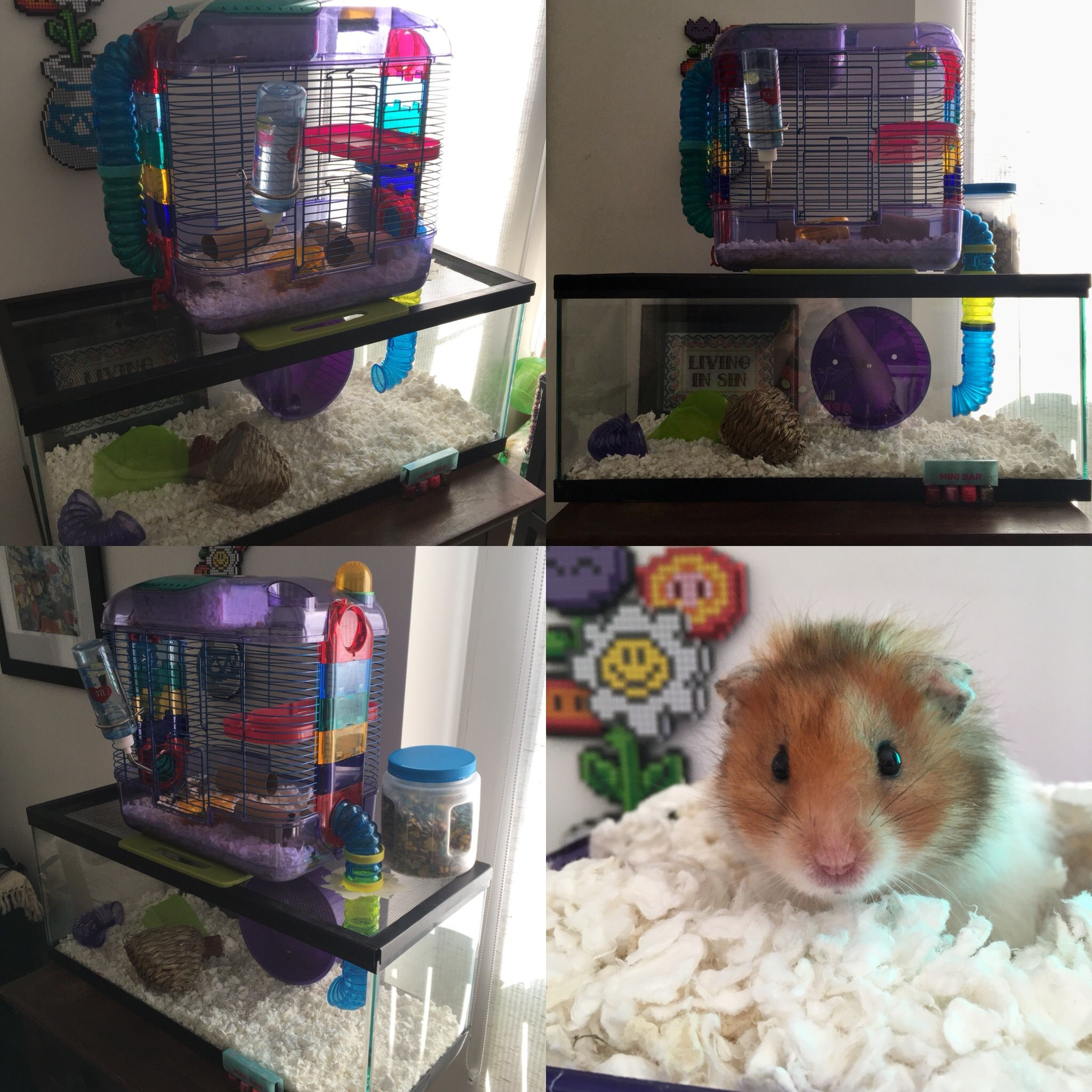 Diy mega hamster cage using a critter trail 2 cage on top for Fish tank for hamster