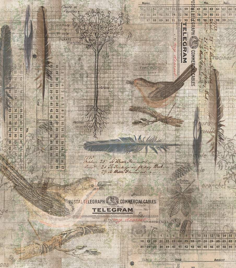 Tim Holtz Premium Cotton Fabric-Aviary Multi
