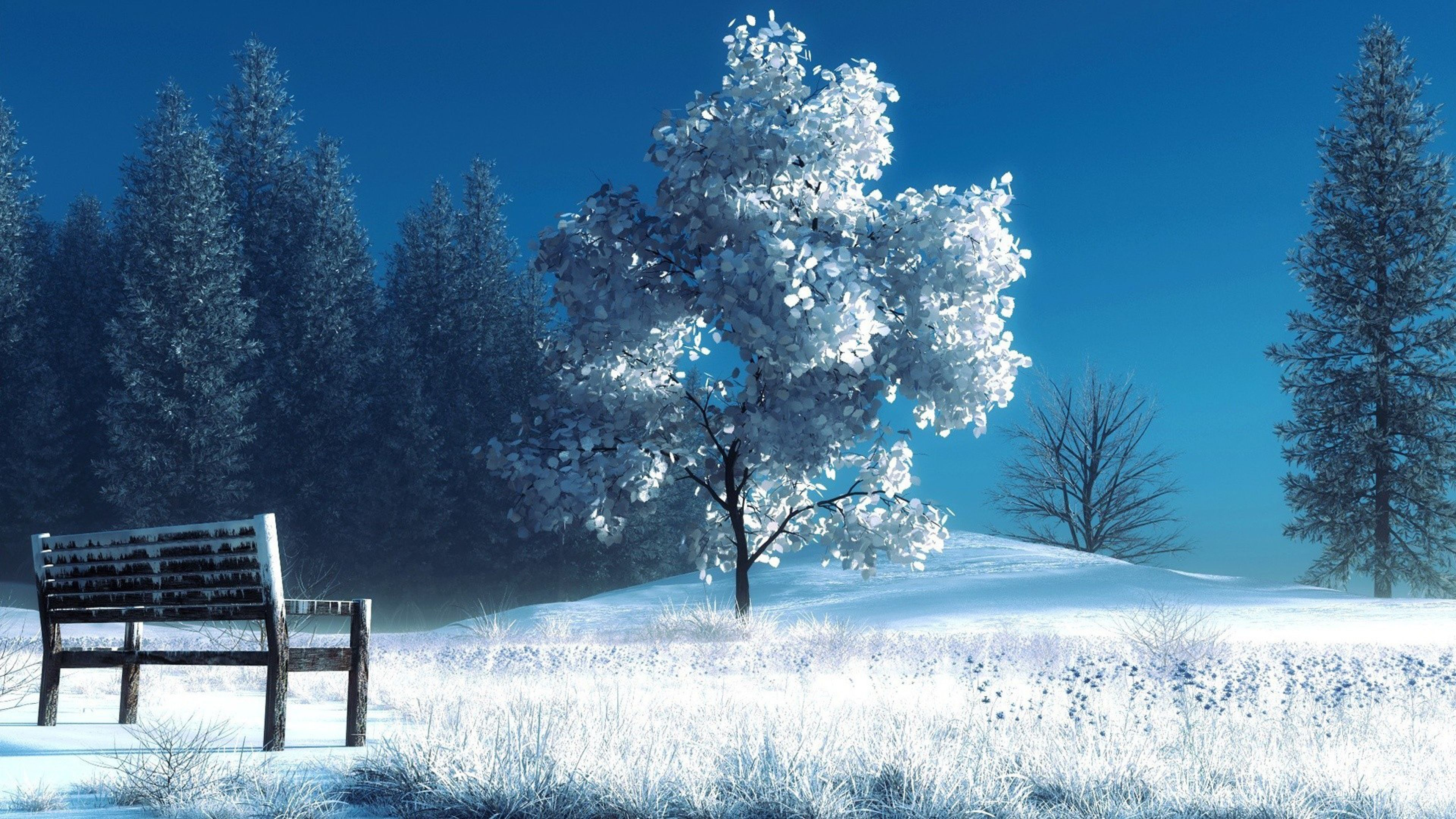 3840x2160 Wallpaper Winter Landscape Nature Snow Bench