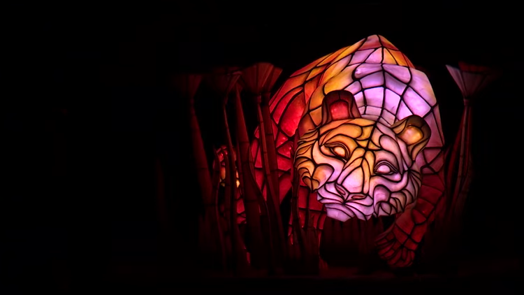 Rivers of Light Animal Kingdom Walt Disney World