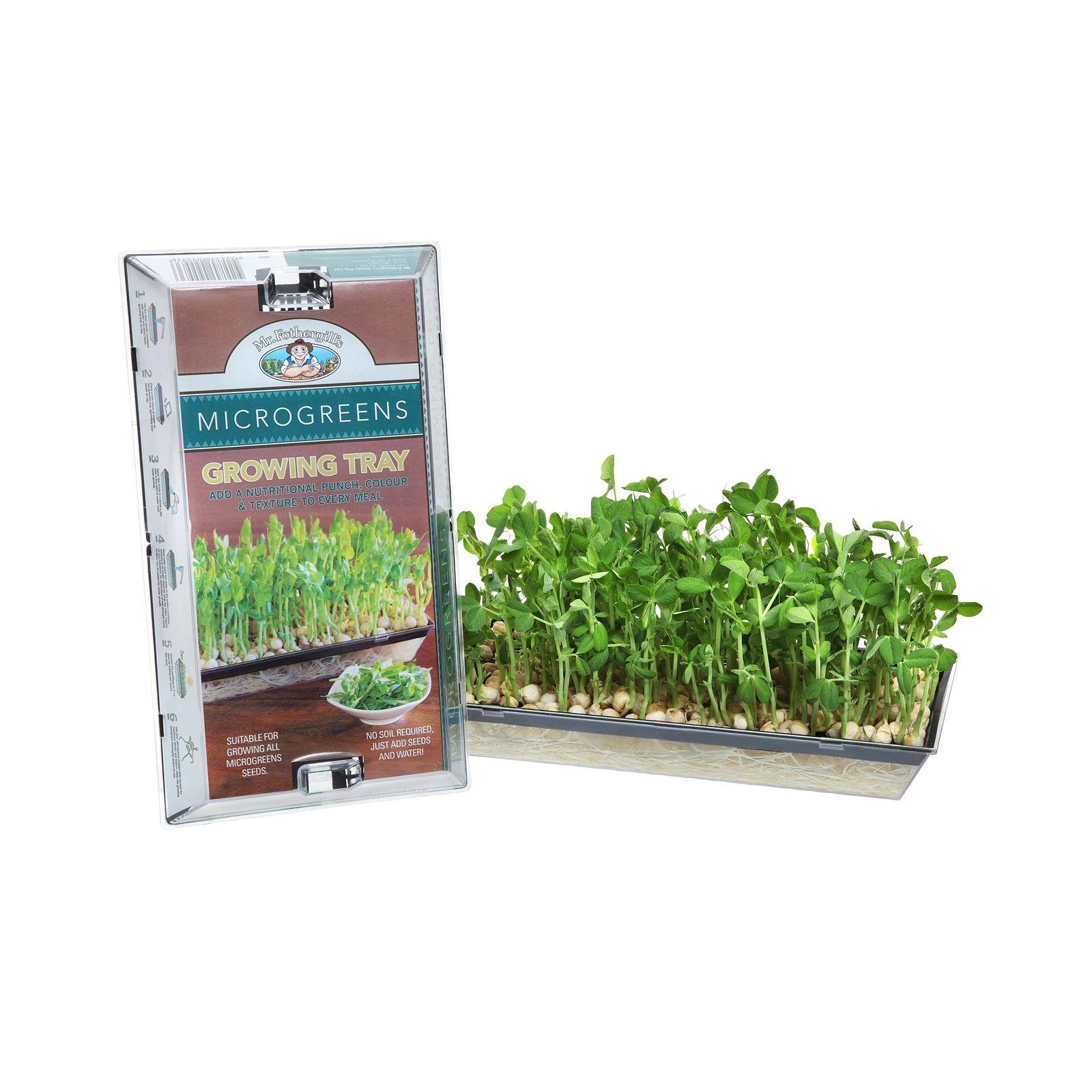 Mr Fothergill S Microgreens Growing Tray Bunnings Warehouse Microgreens Seed Starters Growing Backyard farmer greenhouse bunnings