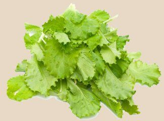 A BIG pile of leafy greens on your 80-10-10 Diet!