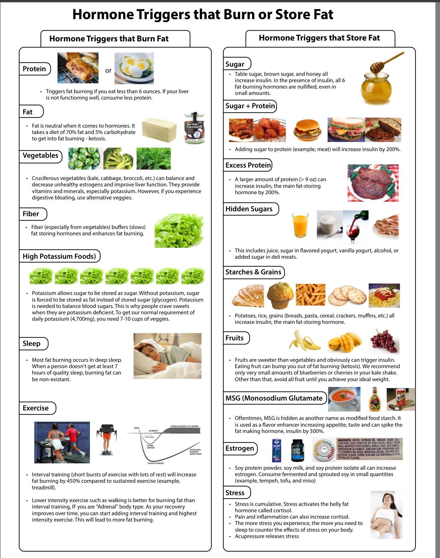 dr berg keto diet meal plan