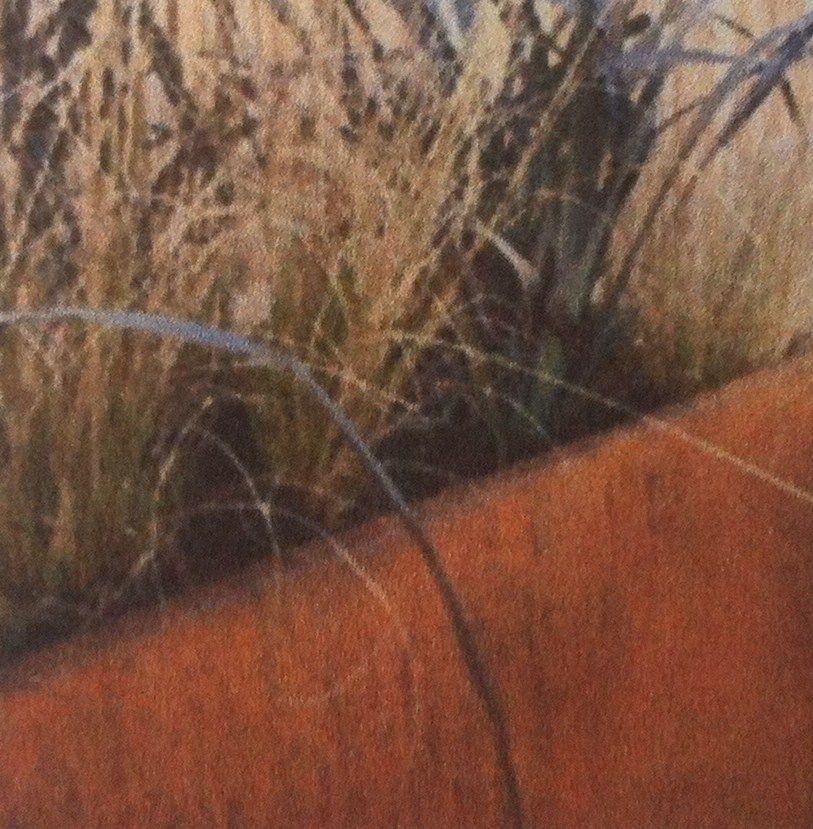 Siergras in bak van cortenstaal