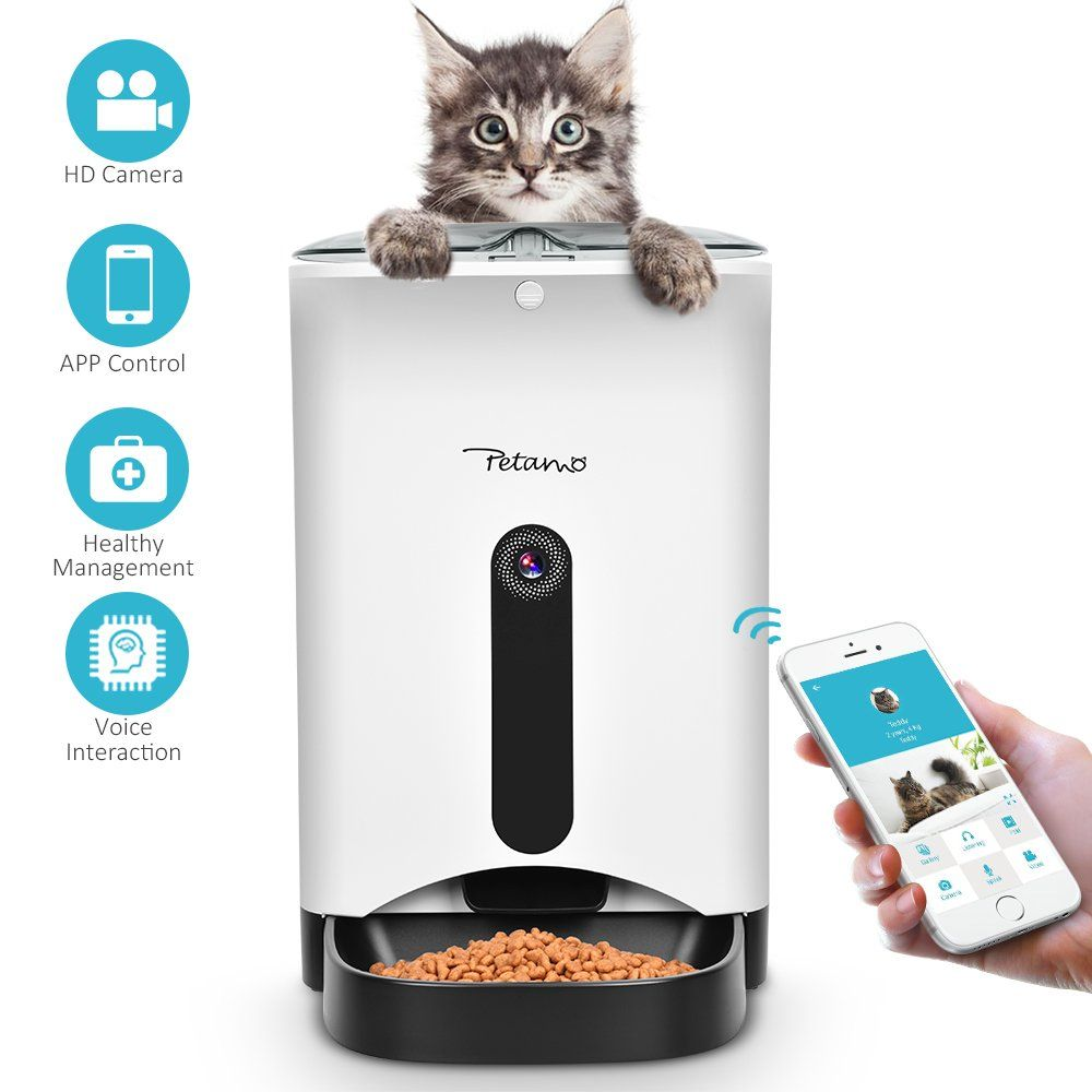 Pin On Automatic Dog Feeder