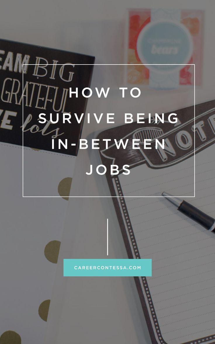 How To Survive Being In Between Jobs Job Career Career Contessa