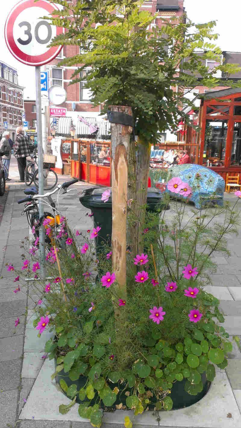 http://meergroenzelfdoen.nl/wp-content/uploads/2013/10/Bankastraat2.jpg