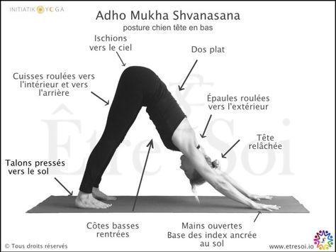 yoga  posture adho mukha shvanasana  indications  Être