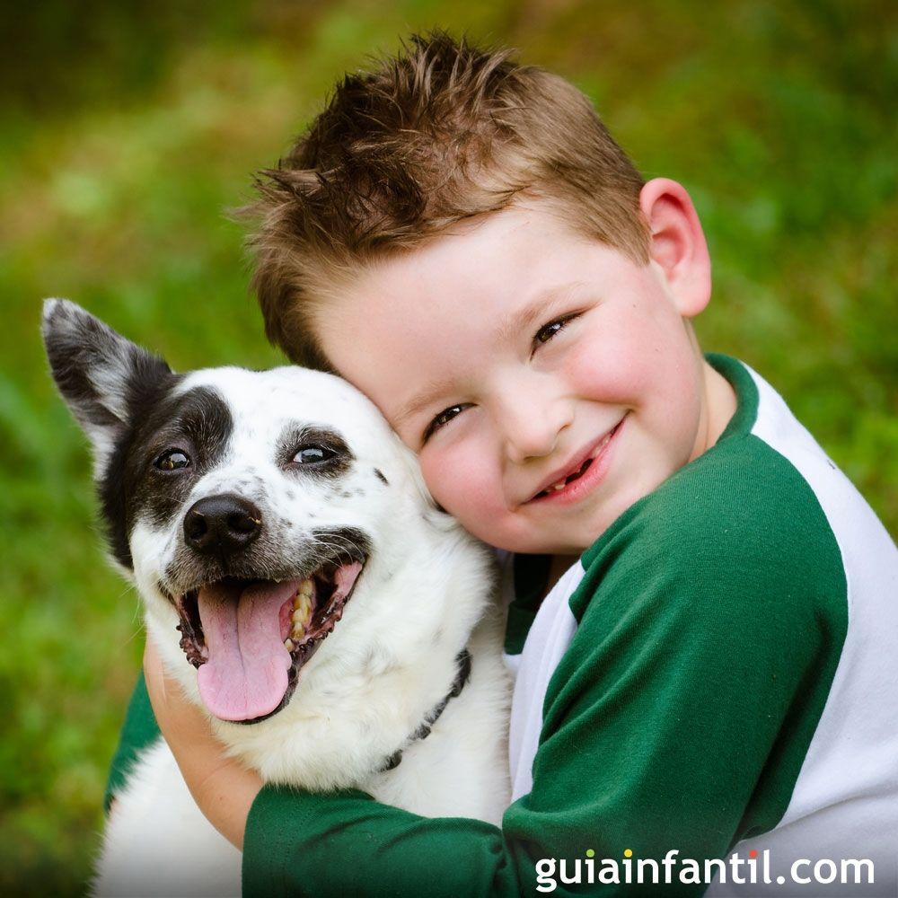 Fantástico vídeo que resume los principales beneficios de las mascotas para los niños.