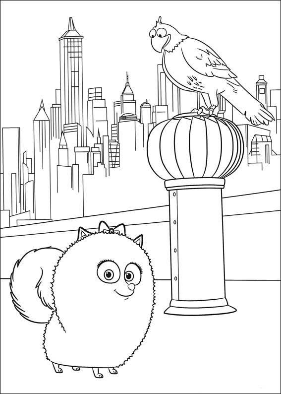 The Secret Life Of Pets Coloring Pages 16 Secret Life Of Pets Pets Drawing Coloring Pages