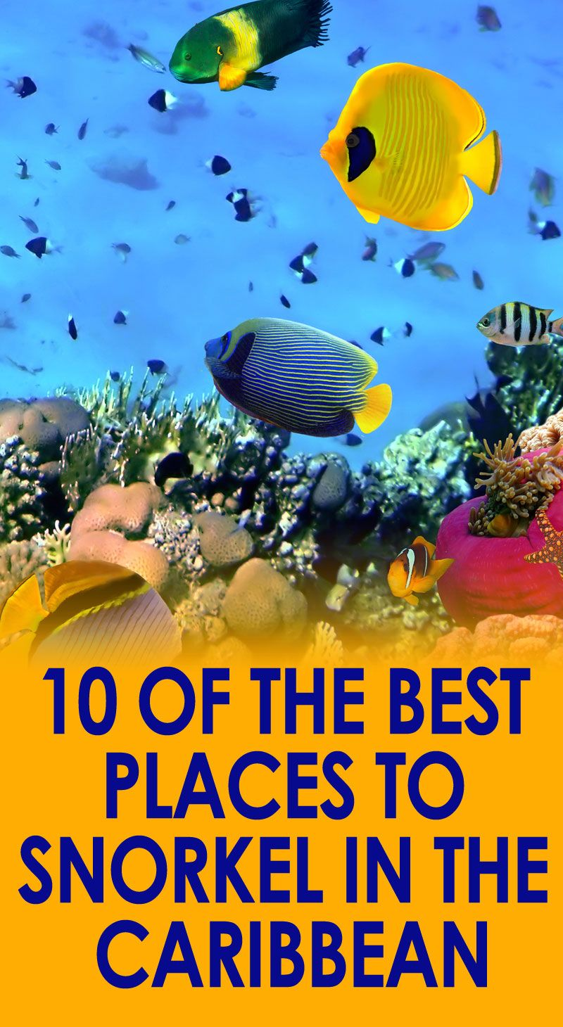 10 Of The Best Places To Snorkel In The Caribbean