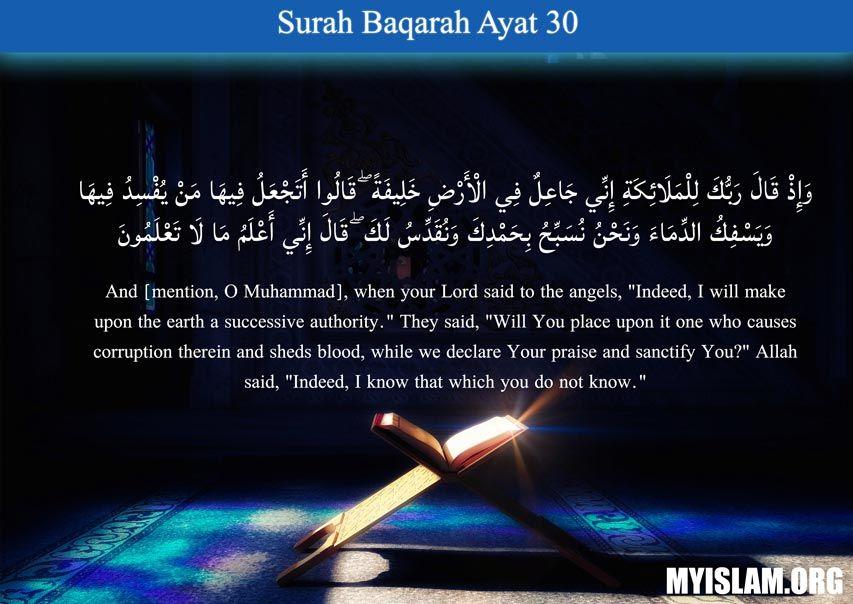 Quran Quote (2:30) in 2020 | Quran quotes, Islamic quotes, Best ...