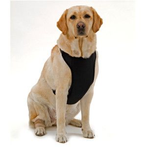 Mesh Harnesses For Large Dogs Petsmart - DATA WIRING DIAGRAMS •