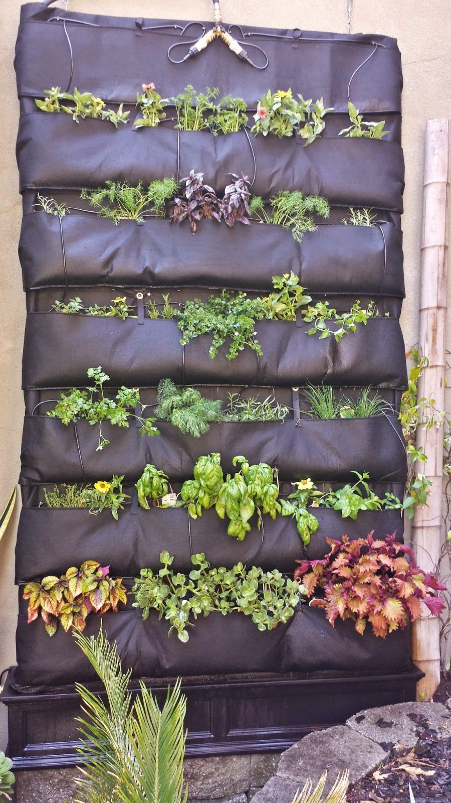 DIY Hydroponic System Grows Herbs On The Wall