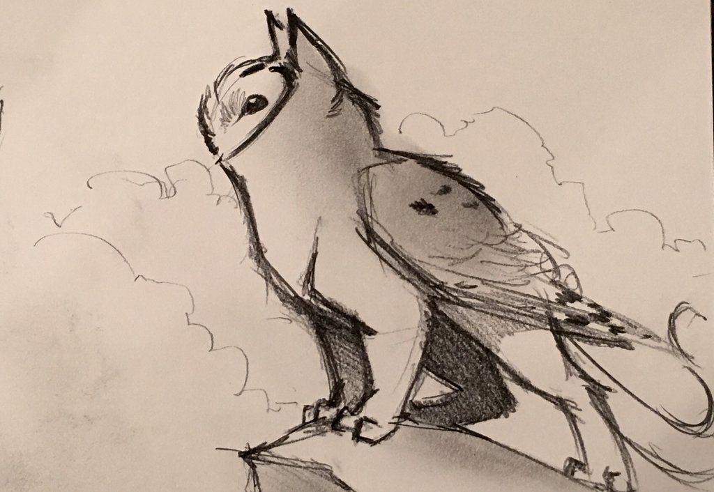 Owl Griffin Doodle Mythical Creatures Art Animal Drawings Creature Drawings