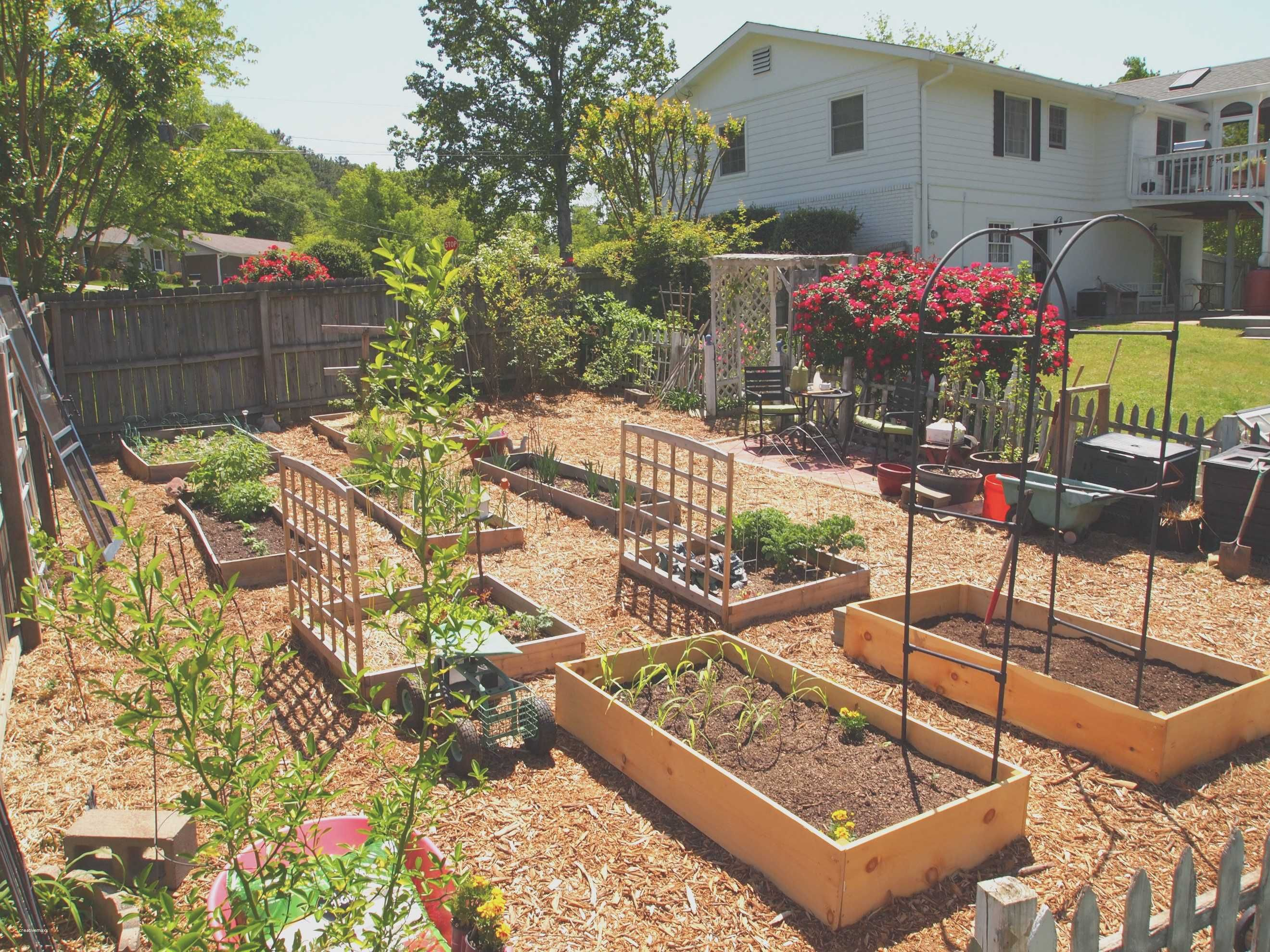 Vegetable Garden Ideas For Small Spaces