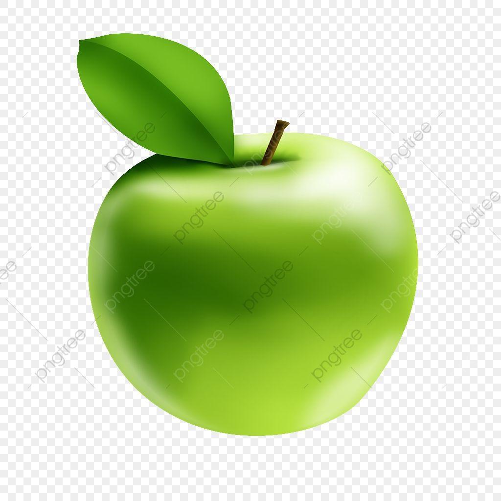 Green Apple Hand Drawn Illustration Green Apple Hand Painted Illustration Png Transparent Image And Clipart For Drawing Illustration Green Apple Clip Art