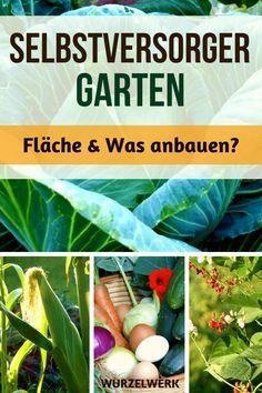 Selbstversorger-Garten: Anlegen #vertikalergemüsegarten
