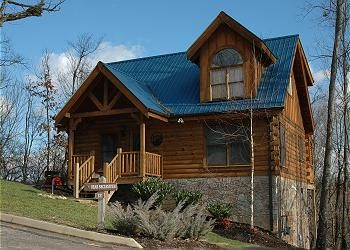 Bear Necessities Is Located In Alpine Mountain Village In The Heart Of Pigeon Forge And Just A Few Minutes From Gat Cabin Vacation Cabin Rentals Cabin Rentals