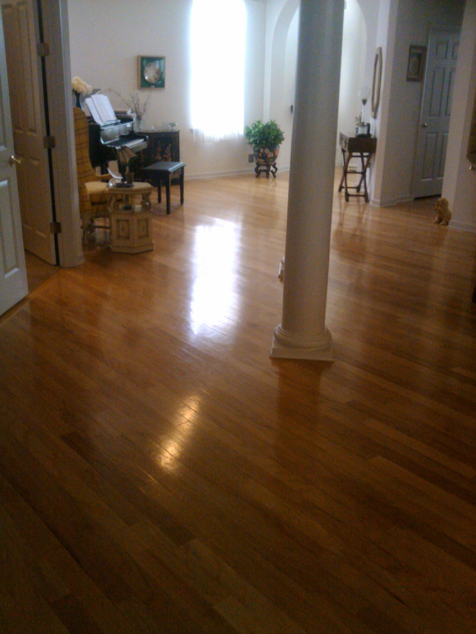 How To Clean Really Dirty Hardwood Floors Without Water Dab A Quarter Sized Drop