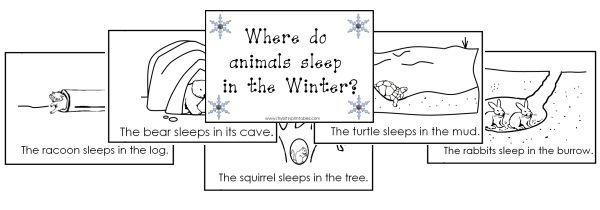 Winter Hibernation Animals Printables – Hibernation Worksheets Kindergarten