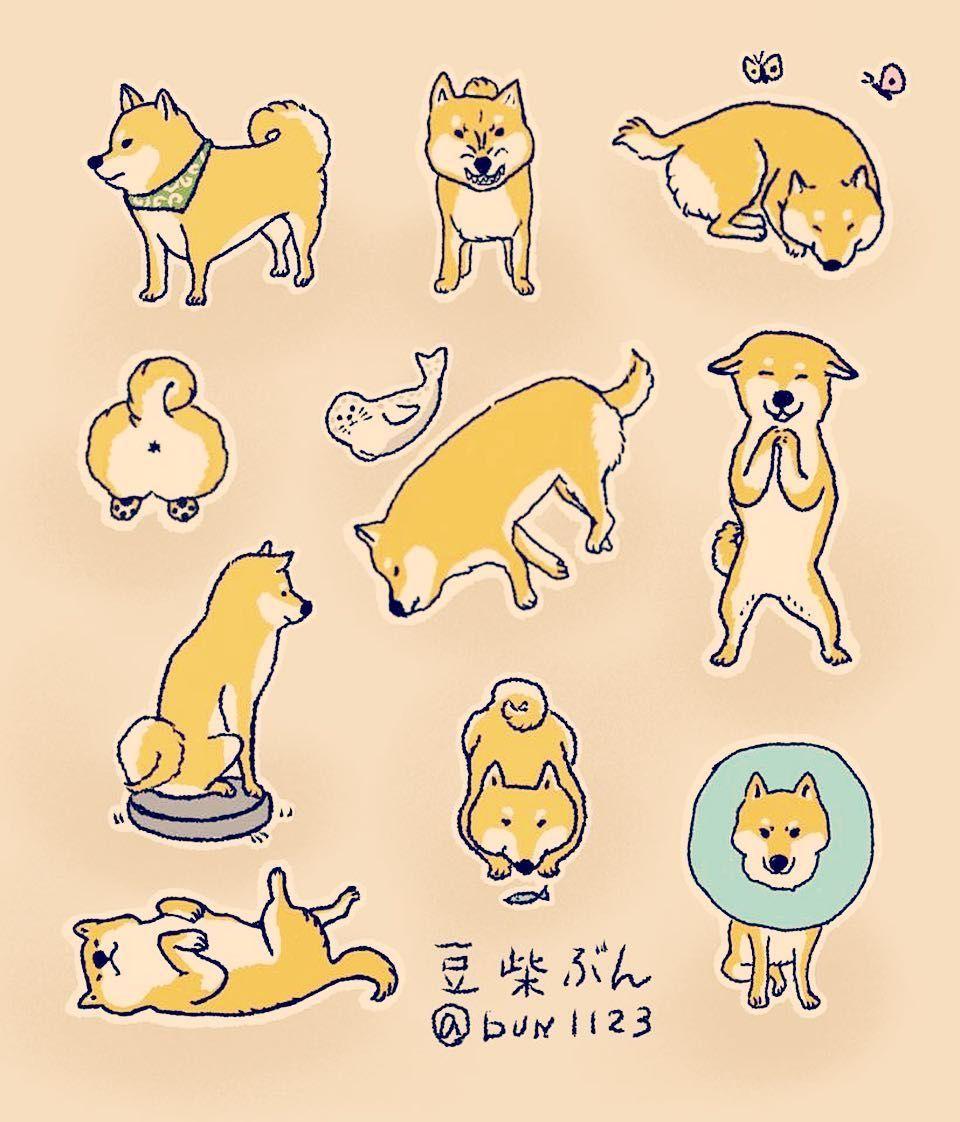 柴犬 昔は 描けなかったけど 一緒にいると自然と描けるようになるもんだねー スズキリエ Riesuzuki 豆柴 Shibainu 柴犬 可愛い犬 イラスト