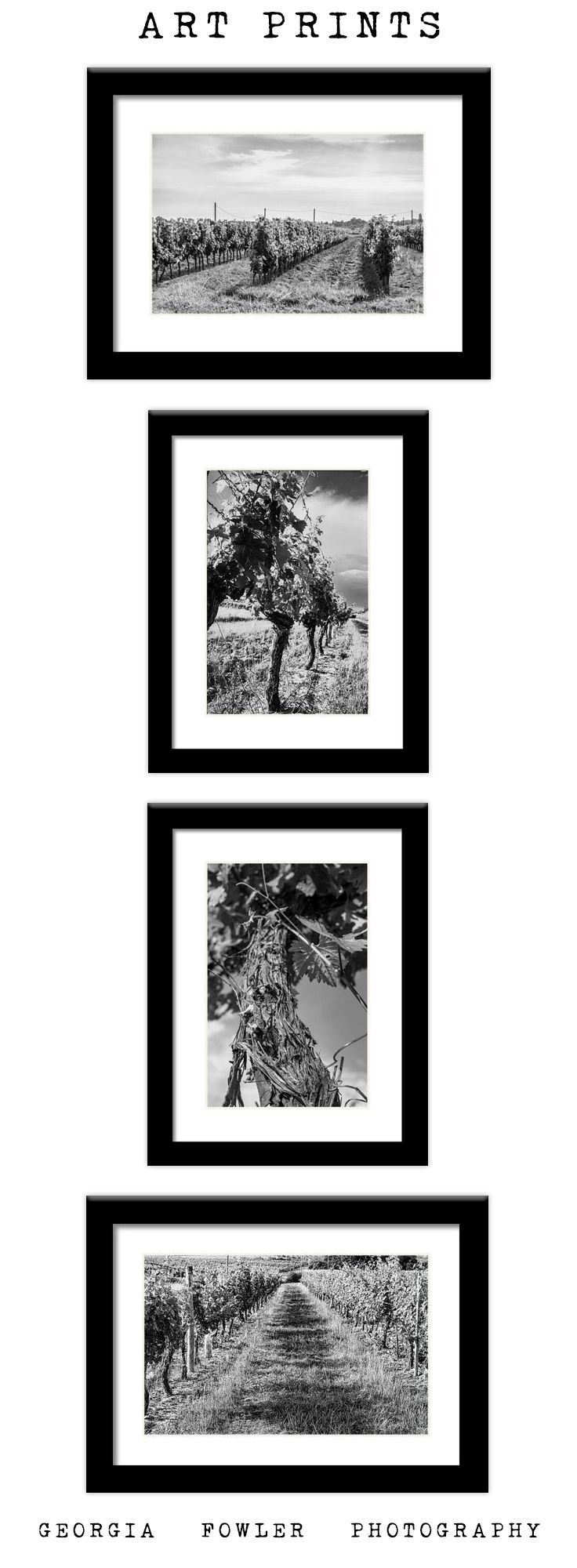 Dining Room Decor Black and White Vineyard Art, French Winery Decor ...