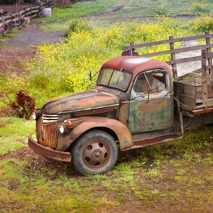 Rusty Old Farm Truck With Images Rusty Cars Old Pickup Trucks