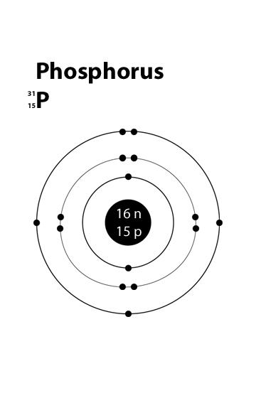 Phosphorus Atomic Structure Google Search Atomic Structure Atom Project Sodium