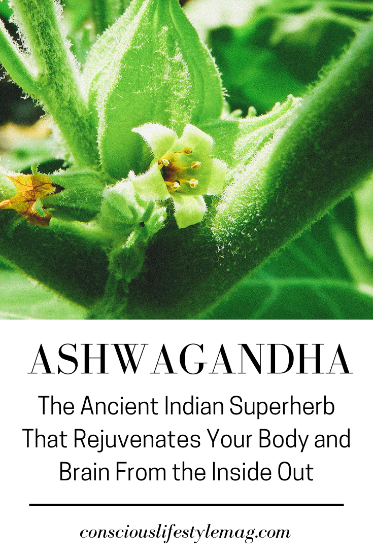 Benefits of Ashwagandha The benefits of Ashwagandha are truly legendary and include things like boosting mood regenerating the body extending lifespan fighting cancer and...