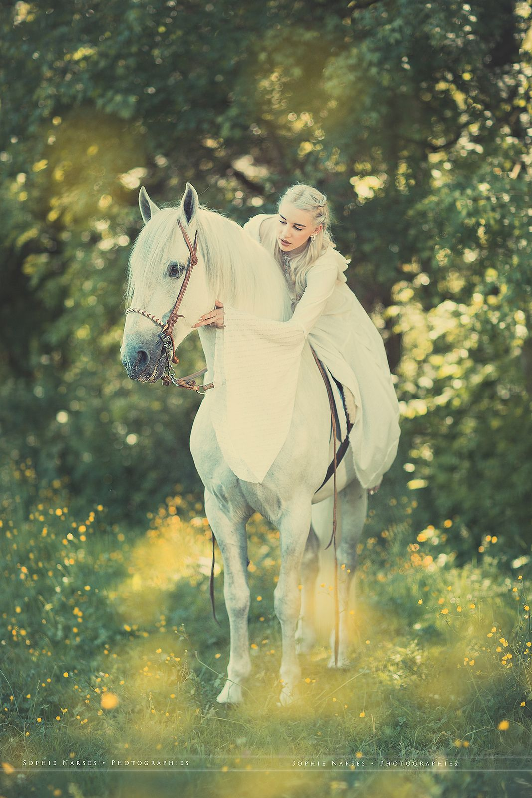 Princess Horse Photo Shoot