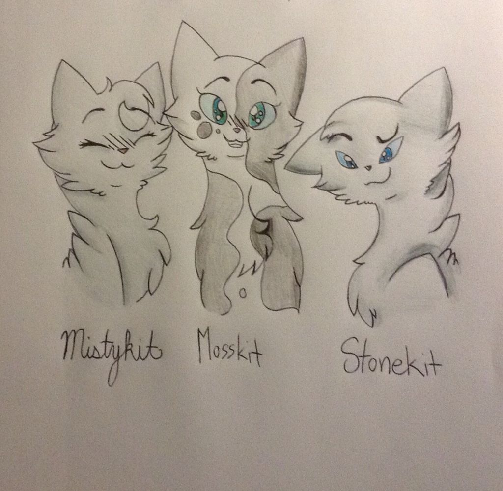 Warriors Erin Hunter Lost Stars: Mistykit, Mosskit And Stonekit, Bluestar's Kits. Mosskit