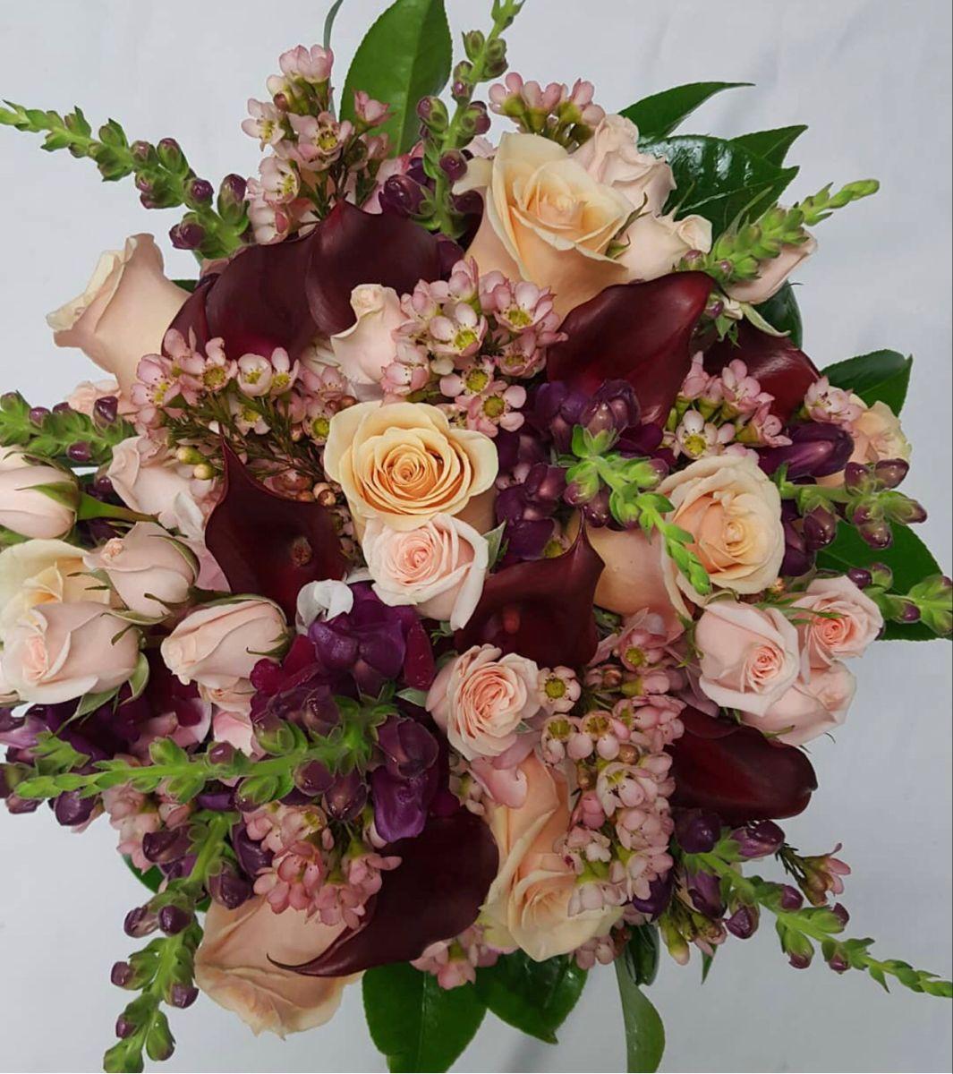 Burgundy Calla Lily in 2020 Calla lily flowers, Calla