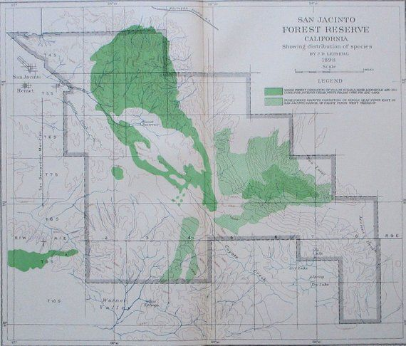 1898 San Jacinto Forest Reserve Antique Map California Ca Showing