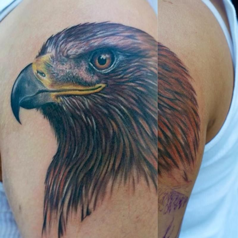 13+ Stunning Eagle shoulder tattoo ideas image HD