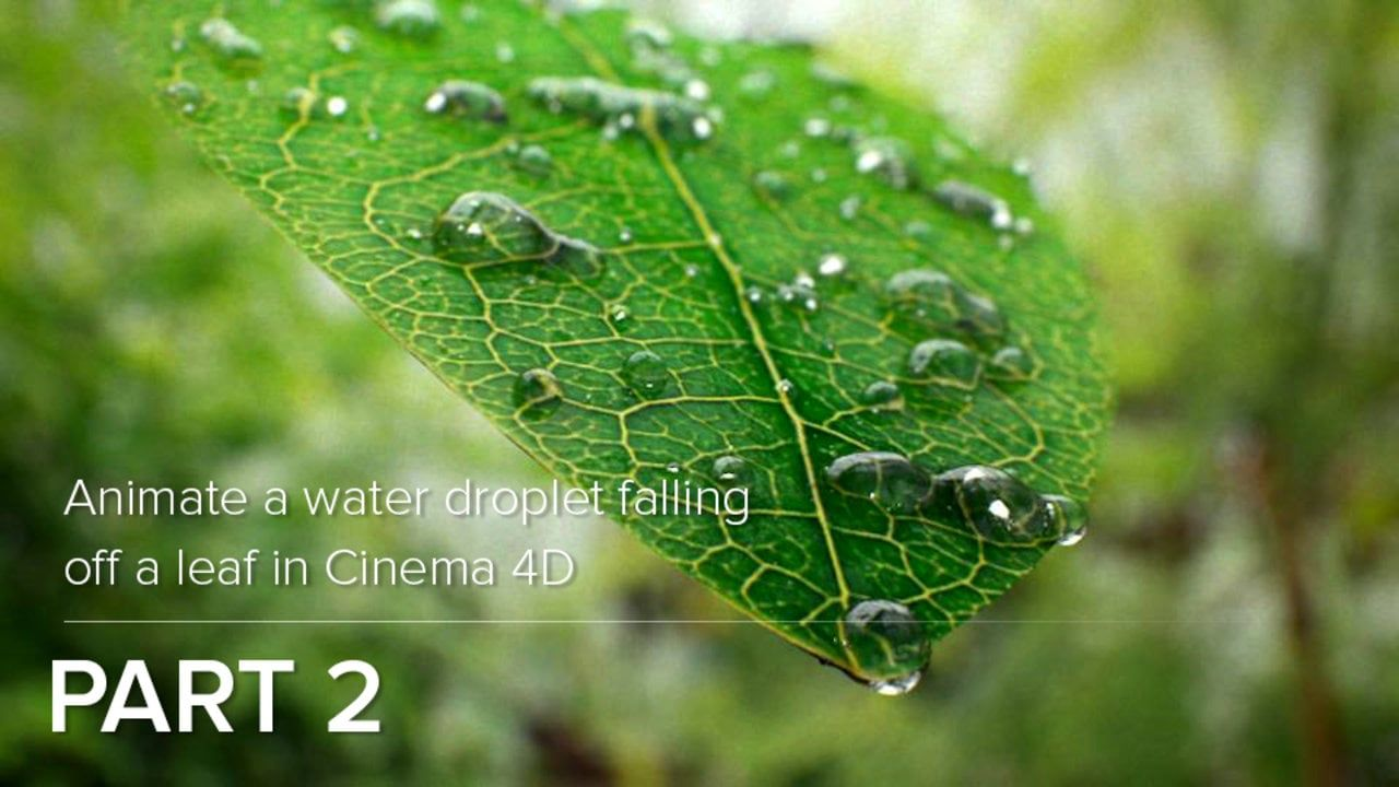 Animate A Water Droplet Falling Off A Leaf in Cinema 4D - Part 2