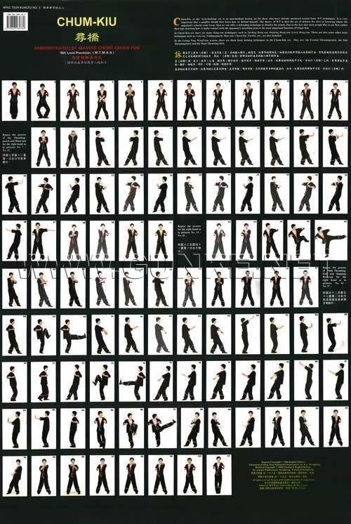 Wing Chun Kung Fu Exercise Wall Maps Wing Tsun Wooden Dummy Forms ...