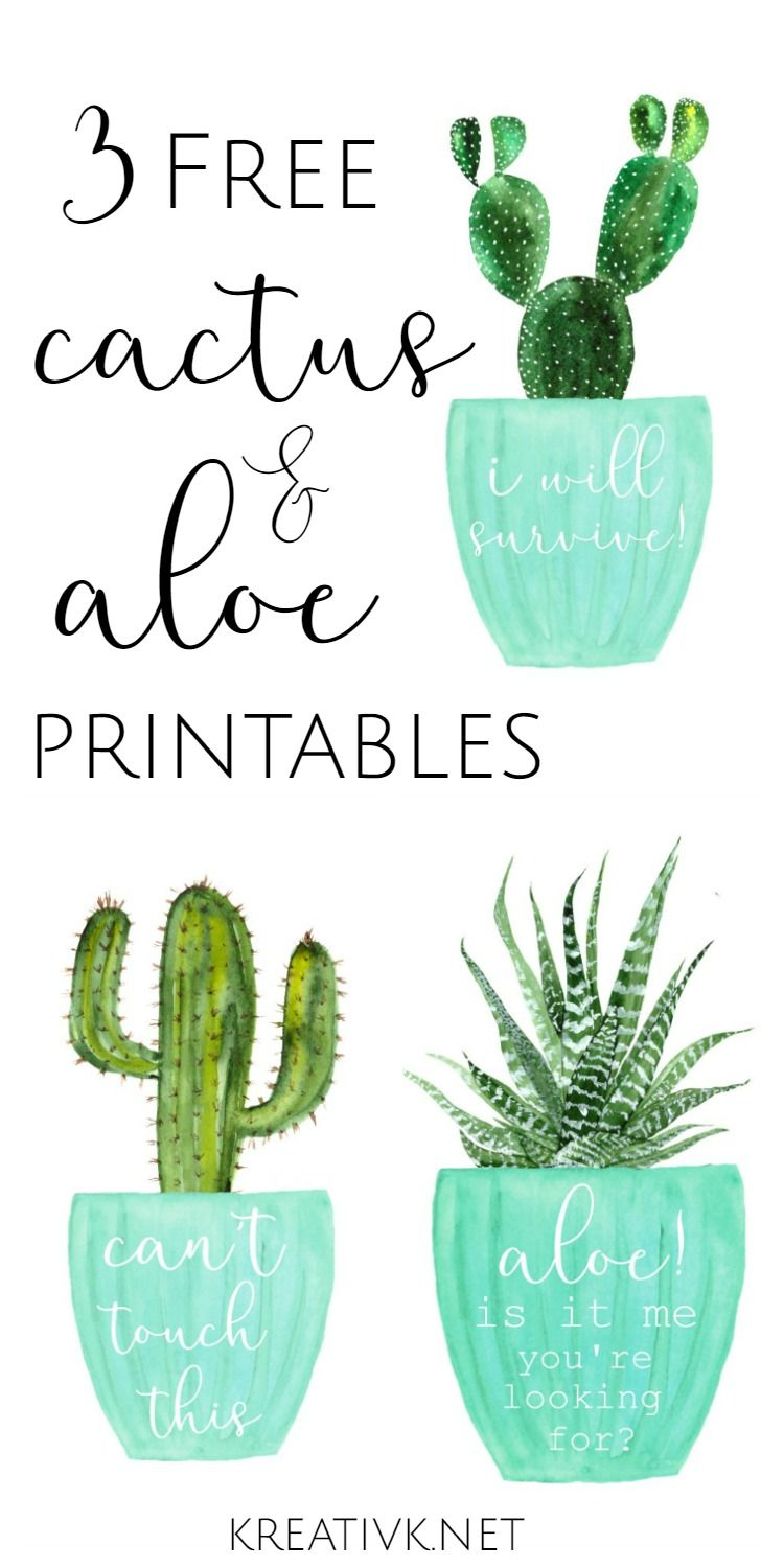 image about Cactus Printable named 3 Totally free Cactus Aloe Printables No cost Printables Cactus