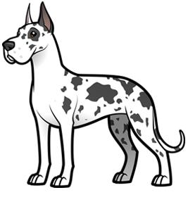 Great Dane Dog Drawing Great Dane Cartoon Dog
