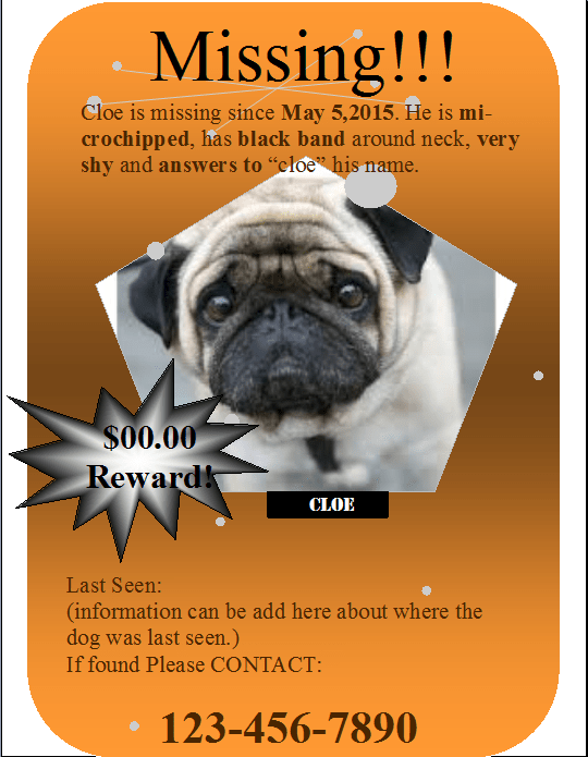 graphic about Printable Lost Pet Flyer referred to as No cost Printable Lost/Learned Doggy Flyer Template MS