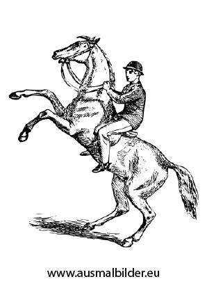 Ausmalbild Aufsteigendes Pferd Mit Reiter Zum Ausmalen Ausmalbilder Ausmalbilderpferde Malvorlagen Ausmalbilder Pferde Ausmalbilder Tiere Ausmalen