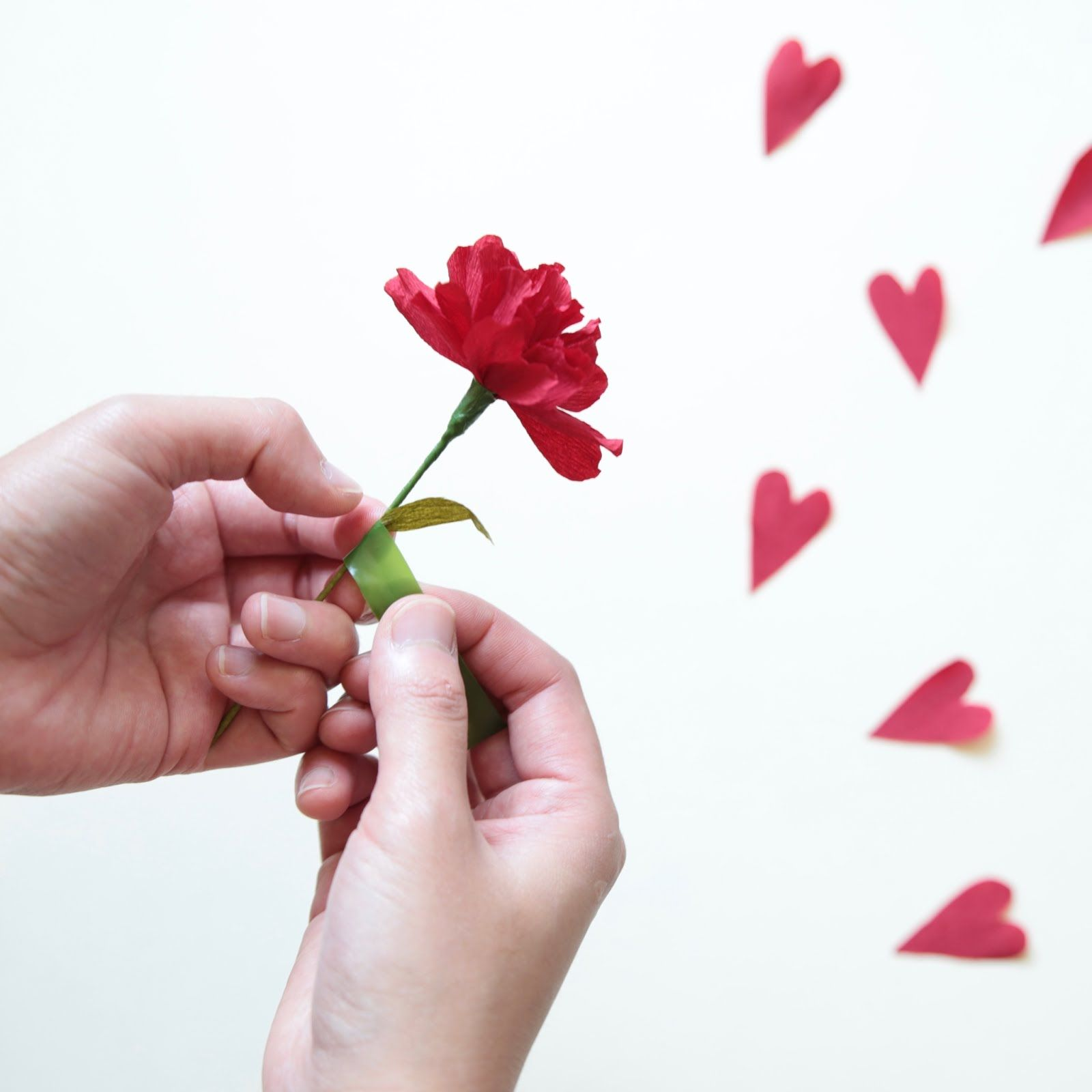 Papetal paper flowers crafts pinterest paper flowers craft if you havent got your valentines day sorted then learn how to give your heart in a paper carnation mightylinksfo