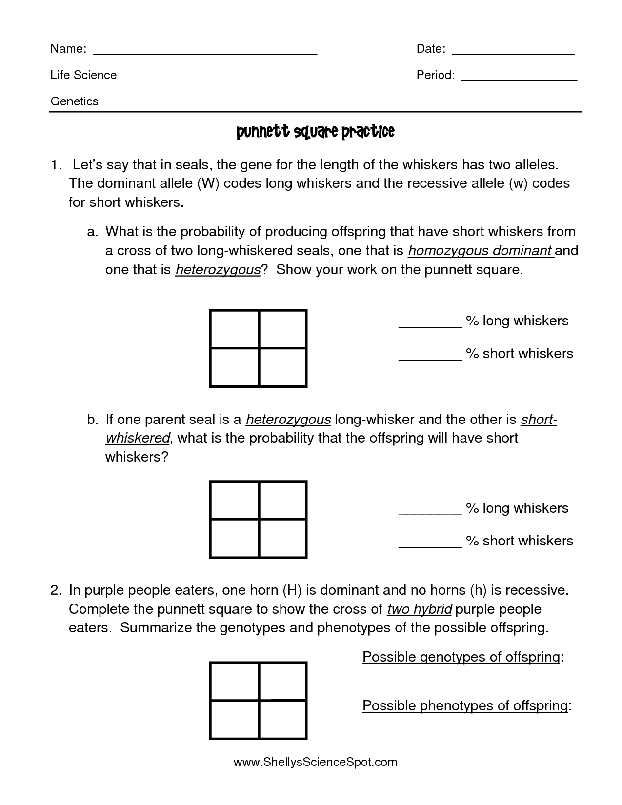 Punnett Square Practice Worksheet
