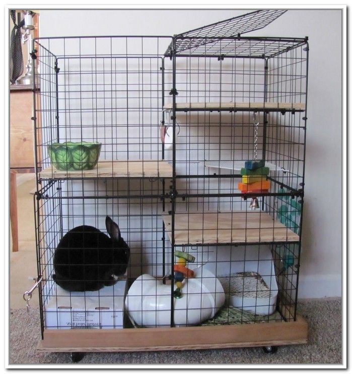 How To Make A Rabbit Cage Out Of Storage Cubes Best