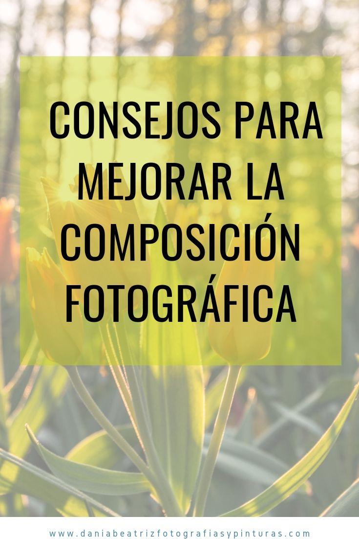 ▷ Consejos para mejorar la composición fotográfica