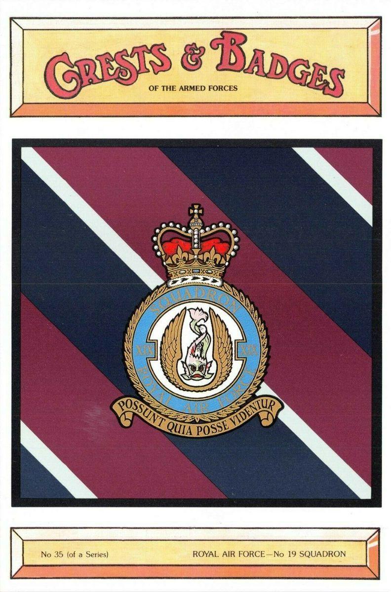 No RAF ® Lapel Pin Badge Gift 55 Squadron Royal Air Force