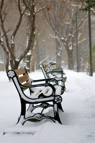 Reasons For Loving winter